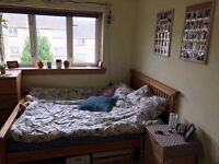 Bright and cozy room in Firrhill for single or couple