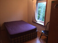 room to rent old town (city centre)