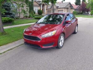 2016 Ford Focus, 56km, Asking $8700