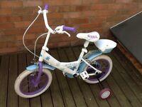 Frozen bike with stabilisers