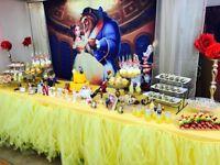 Birthday Party Decorations rental