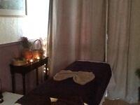 Professionall Chinese massage Therapy