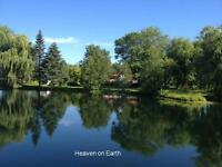 Beautiful cottage with pond in 50 acres of land near lake simcoe