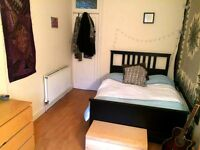 Spacious double room in homely West End flat
