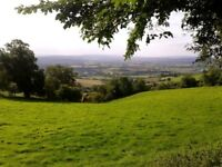 Wanting to rent a piece of land/woodland in or near to Bath, Somerset