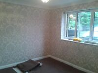 WALLPAPERING / DECORATING / HANDYMAN / LAMINATE FLOORING / ELECTRICIAN / FLATPACK & SHED ASSEMBLY