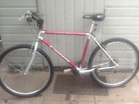 Carrera bike £40 can deliver any time for petrol 26 wheel19 frame15 gears it's in old working order