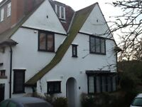 Bromley south Excellent 2 Double rooms availables in a very nice and quiet area Free WIFI