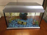 FISH TANK AQUARIUM SETUP + ACCESSORIES FOR SALE