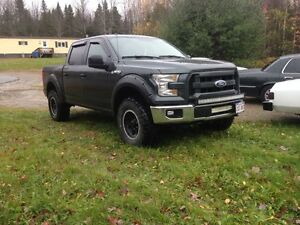 2015 f150 fender flares and programmer