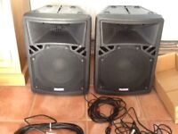 SoundLAB pro speakers G592B 150w RMS all leads very clear clean sound