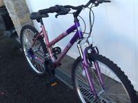 Ladies Universal Fusion Bike