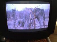 Goodmans Nicam digital stereo television