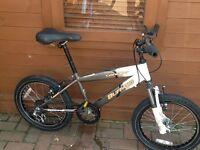 Buffalo Concept Bike