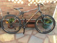 Mountain Bike - Handsome Dog hardtail - Bargain! Price drop!