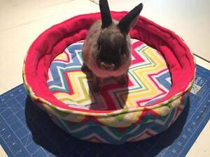 Handmade pet beds - The Cosy Workshop Sydney City Inner Sydney Preview