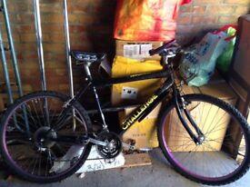 Mountain Bike + Bike Trailer
