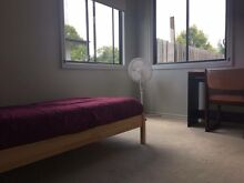 Affordable Room for Rent - Large, Student Share House Upper Mount Gravatt Brisbane South East Preview