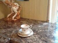 Tea set , bone china , 18 piece