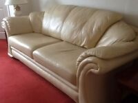 Leather 3 seater and 2 x chairs