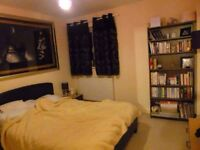 Beautiful 2 rooms to let in a modern split level apartment