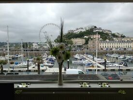 **not to be missed *** House share overlooking Torquay harbour**