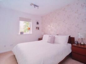 Bright 2 Double Bedroom Flat for rent