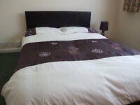 Room to Rent Double en suite bedroom plus own separate lounge