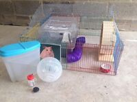 Hamster Starter Kit / 10 piece Hamster Starter Kit (inlc: cage, play pen, toys, ect)