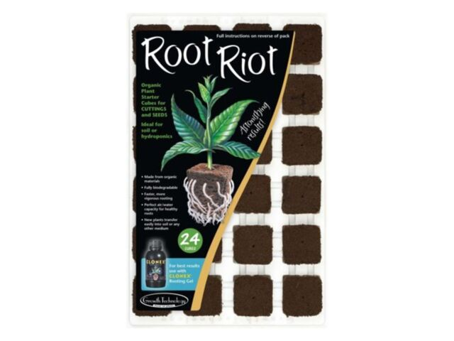 24 Cubes Root Riot Tray Root Riot Cubes Propagation