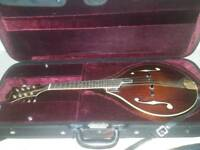 Eastman MD805 mandolin with fishman pickup and hardcase
