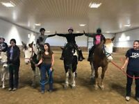 Birthday parties and events with horses