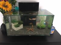 Fluval edge fish tank £55 Ono .. Offers welcome