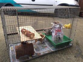 Degu , rat , chinchilla metal indoor cage PLUS accessories