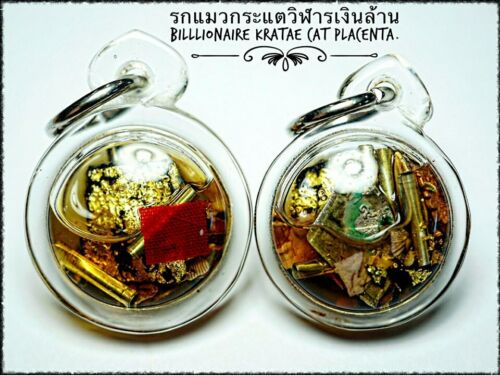 Billionaire Cat Placenta Arjarn O Thai Amulet Talisman Money Stong Lucky Wealth