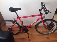 Adult mountain bike in good condition, only £40.....