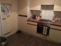 3 BED SEMI STUNNING HOME FOR 4 BED AS SOON AS POSSIBLE