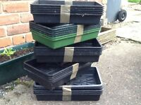 Seed/potting trays.