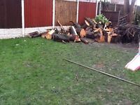 FREE LOGS FOR FIRE WOOD OR FEATURES IN GARDEN