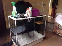 Double rat cage