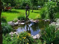 Professional service by a team of 2 experts gardeners for £35/h