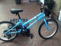 """Girls /Unisex 20"""" wheel blue bike, excellent condition"""