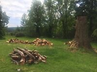 Garden woodstacking! 1-2 days work - ideal for Student(s) on summer break!