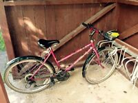Lady bicycle for sale for someone 165-175 cm tall