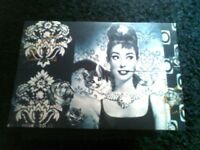 Pair of let me new Audrey Hepburn canvas only £2 each
