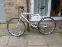 Lovely Raleigh max bike£40 can deliver for petrol26 wheel20 frame 15 gears no offers
