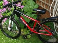 MoutIn bike great condition