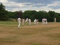 Cricket players wanted for team on Essex/London border