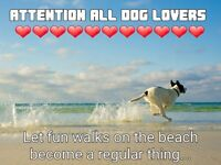 STATIC CARAVANS FOR SALE******ATTENTION ALL DOG LOVERS****PET FRIENLDY , SEA VIEWS , BEACH ACCESS