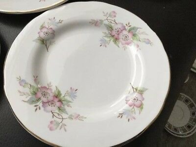 Crown Trent China Staffordshire Flower Side Plate 16.5cm Diameter